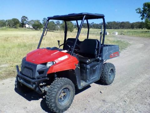 Polaris side by side buggy