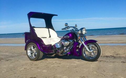 Custom Harley Fatboy 2000 Trike