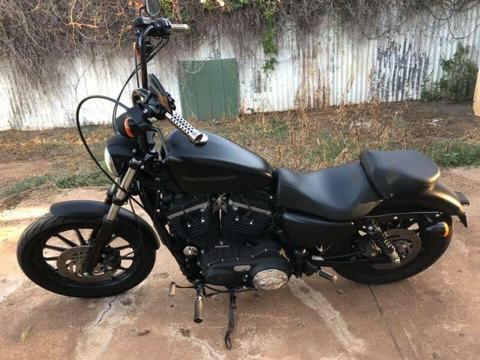 Iron 883 Harley Davidson