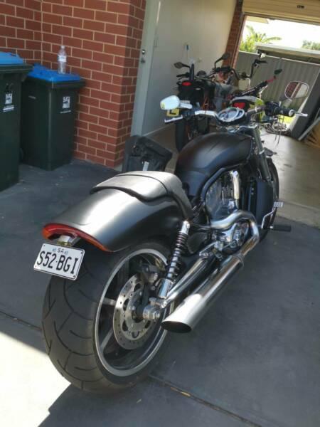 12 Harley Davidson V Rod muscle
