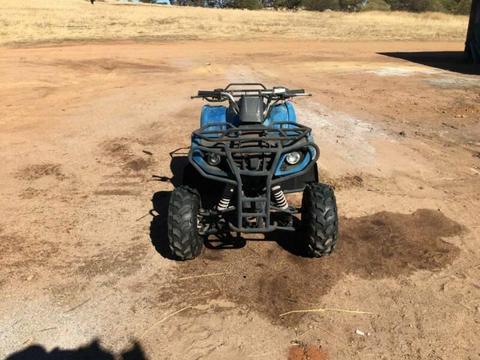 Quad cycle ATV