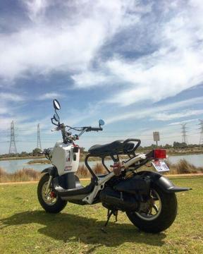 Honda Zoomer / Ruckus 50cc Scooter
