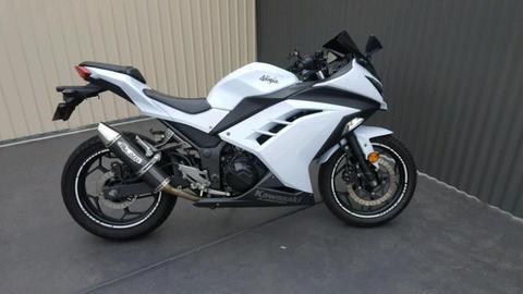 Kawasaki ninja 300 LAMS