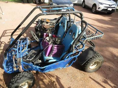 quad bike & buggy