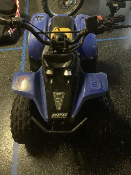 2013 Quad Bike 110cc