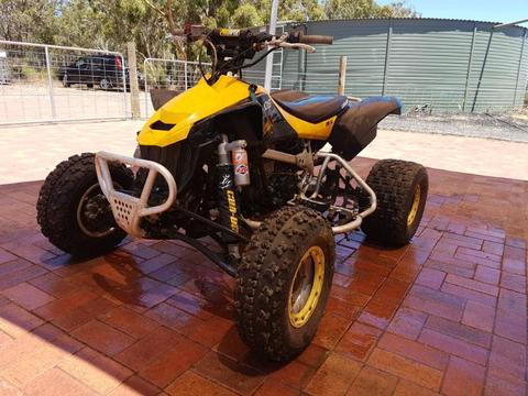 2010 CanAm DSxmx 450