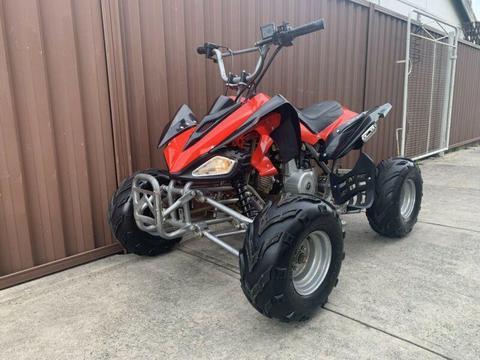 2011 Quad Bike 100cc Automatic