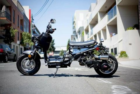 150CC 2019 HUNTER SCOOTER by HUNTED - MONO MOTO QLD DEALER