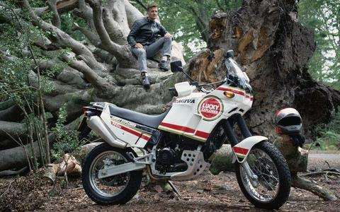 Wanted: wanted Cagiva elefant