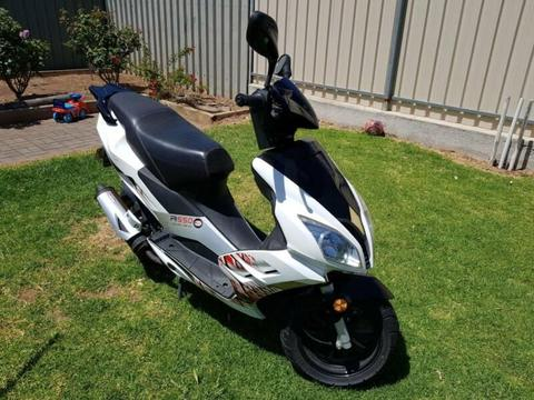Zoot Scooter