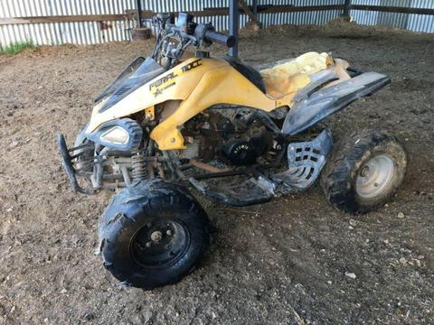 110 cc Quad Bike