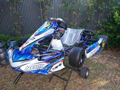 Go Kart Arrow X4