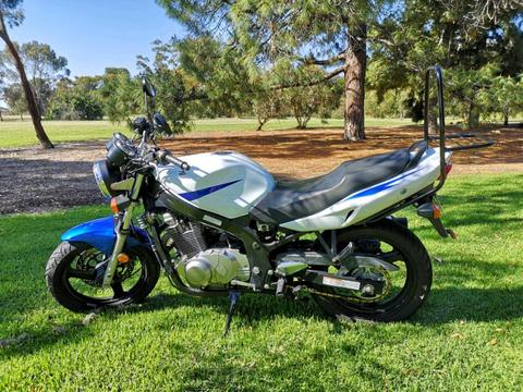 Suzuki GS500F - PROFESSIONALLY SERVICED