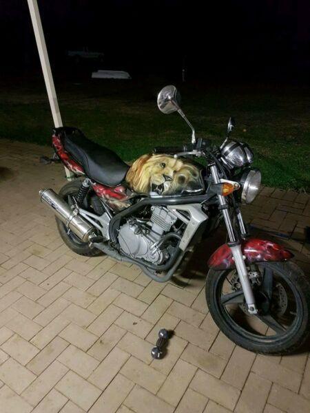 Custom Kawasaki er500 lams